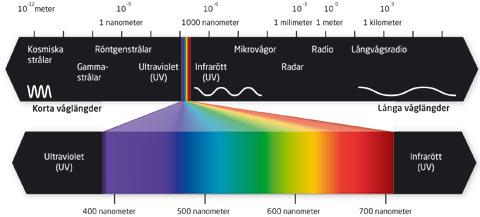 vad är UV ljus